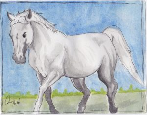 """White Horse,"" a Bring-a-Smile watercolor by Connor Heimsath, artist"
