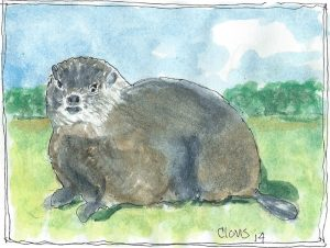 """Woodchuck,"" a Bring-a-Smile watercolor by Clovis Heimsath, artist"