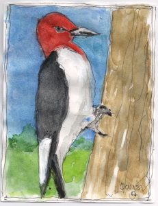 """Woodpecker,"" a Bring-a-Smile watercolor by Clovis Heimsath, artist"