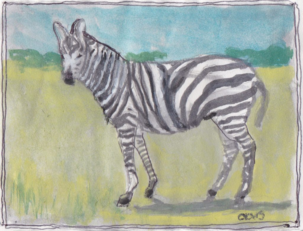 """Zebra,"" a Bring-a-Smile watercolor by Clovis Heimsath, artist"